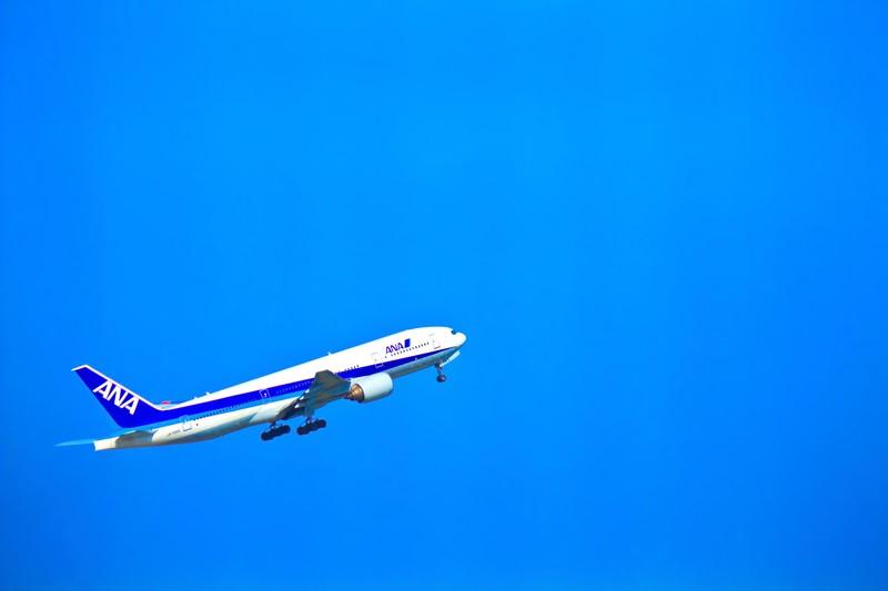 青とANA